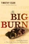 2010-the-big-burn
